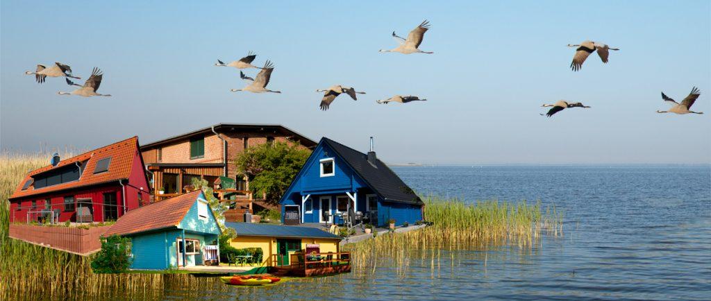 Ferienhäuser Boddenperlen, Collage, Urlaub am Saaler Bodden