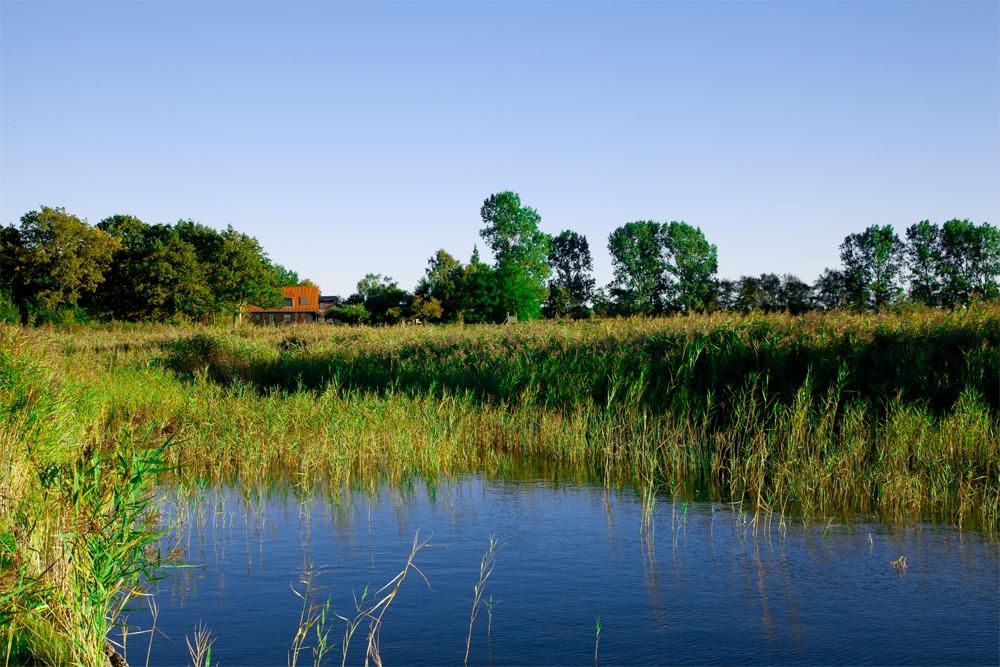 Saaler Bodden, Ferienhäuser Boddenperlen vom Wasser