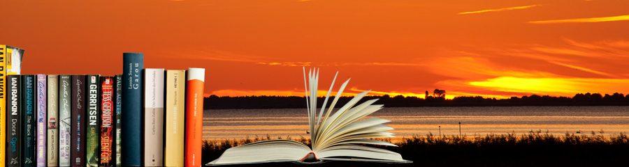 Lesen im Urlaub – Buchtipps: Belletristik