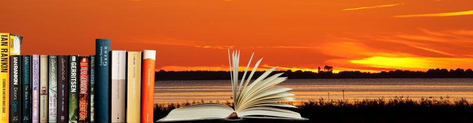 Lesen im Urlaub, Buchtipps, Buchrücken, aufgeklapptes Buch